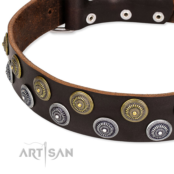 Genuine leather dog collar with incredible adornments