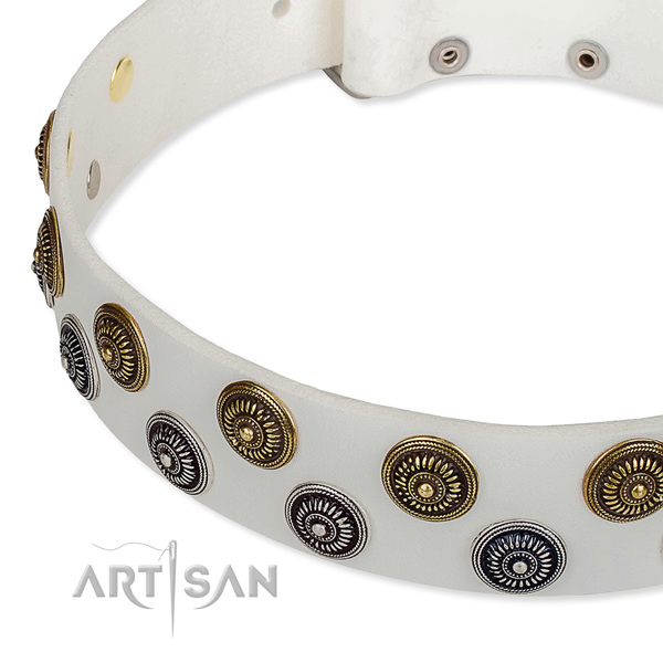 Genuine leather dog collar with remarkable studs