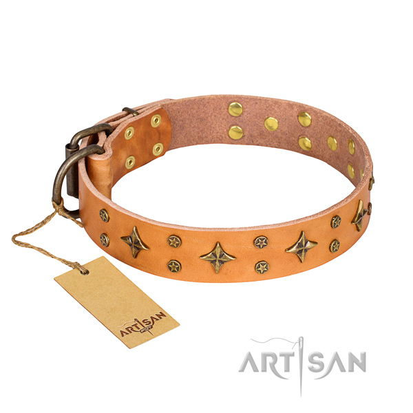 Inimitable leather dog collar for everyday walking