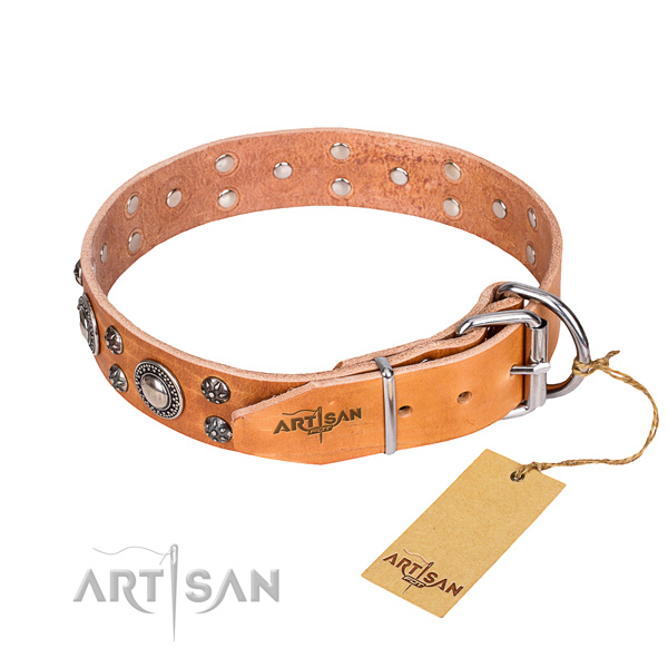 Everyday use full grain genuine leather collar with studs for your four-legged friend