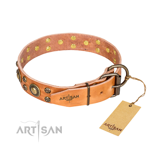 Walking full grain genuine leather collar with studs for your canine