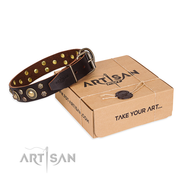 Stylish full grain genuine leather dog collar for walking