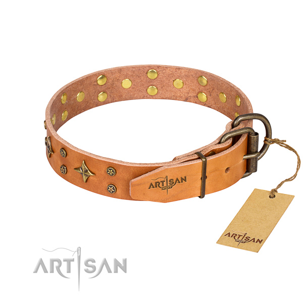Daily walking full grain leather collar with decorations for your canine
