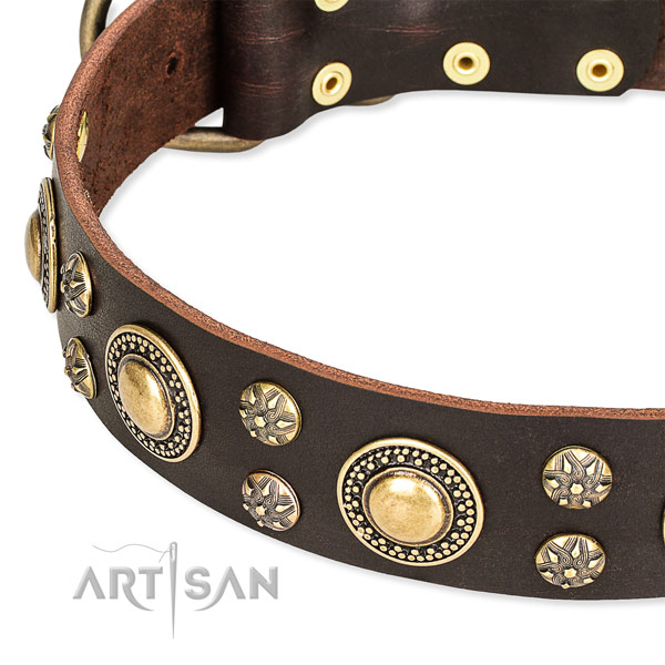 Handy use full grain natural leather collar with corrosion resistant buckle and D-ring