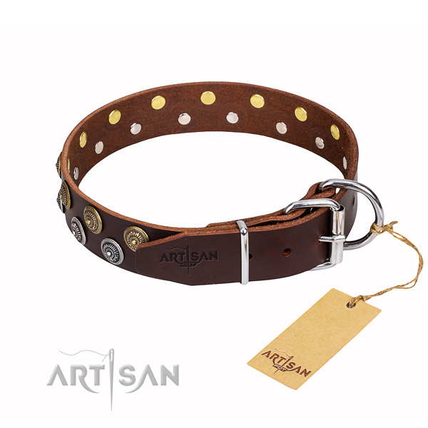 Everyday use full grain natural leather collar with decorations for your four-legged friend