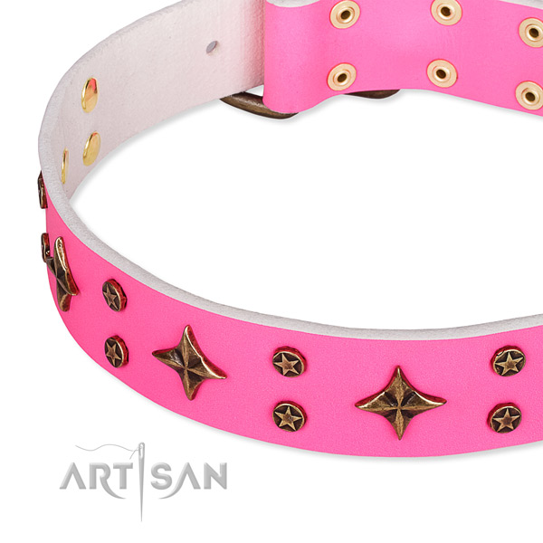 Full grain natural leather dog collar with trendy embellishments