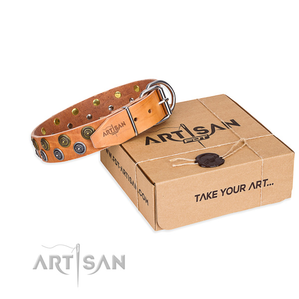 High quality full grain leather dog collar for stylish walking