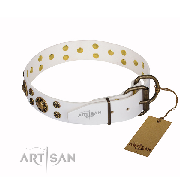 Daily use full grain genuine leather collar with embellishments for your four-legged friend
