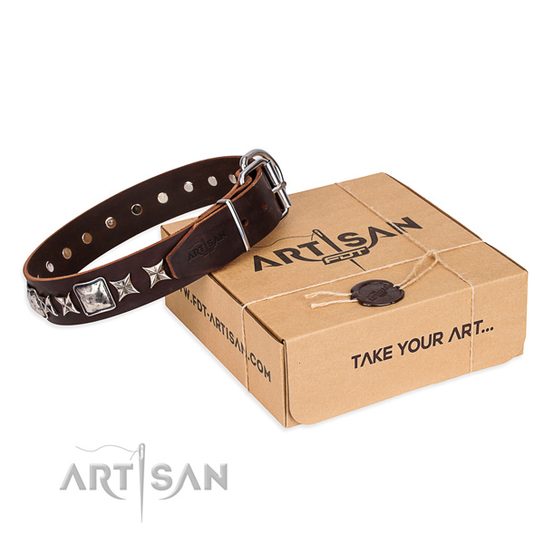 Embellished full grain natural leather dog collar for stylish walking