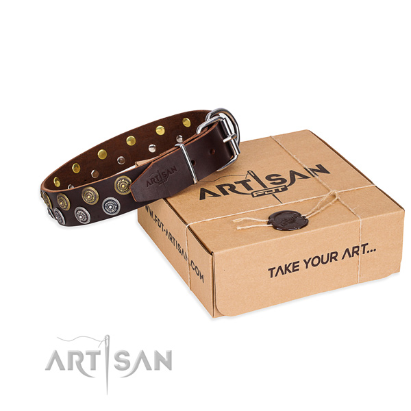 Full grain natural leather dog collar with adornments for walking