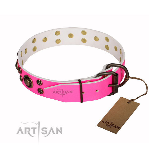Significant natural genuine leather dog collar for walking
