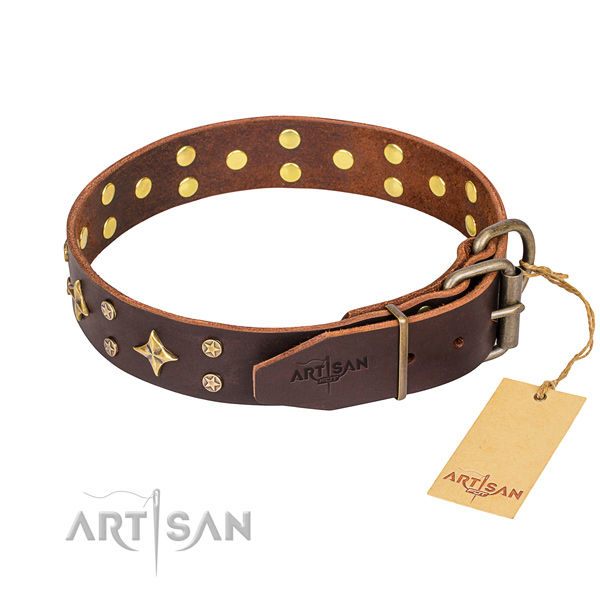 Everyday walking leather collar with studs for your four-legged friend