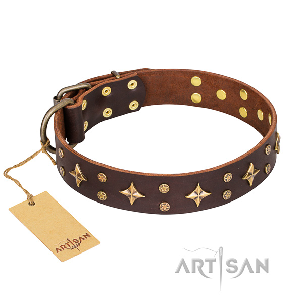 Stunning natural genuine leather dog collar for everyday use