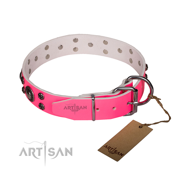 Everyday use leather collar with rust resistant buckle and D-ring