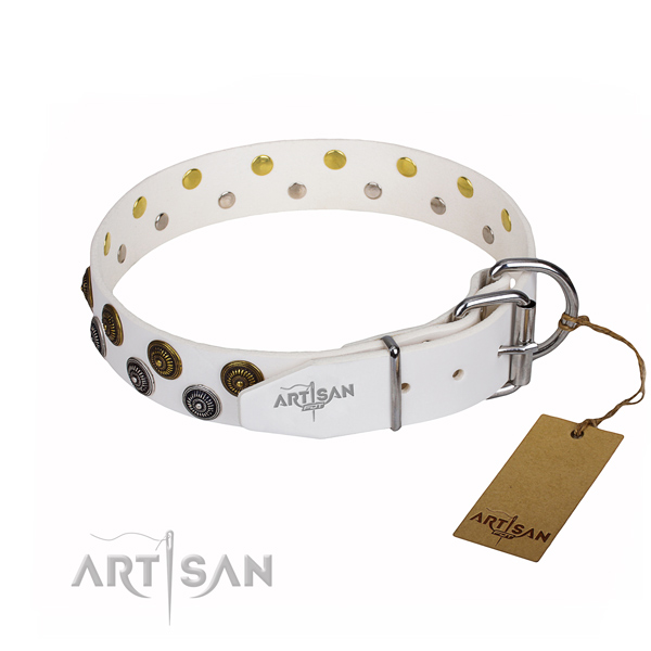 Everyday use full grain leather collar with embellishments for your doggie