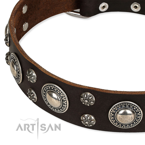 Snugly fitted leather dog collar with resistant to tear and wear durable set of hardware