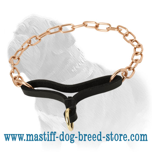 Martingale collar with leather strap
