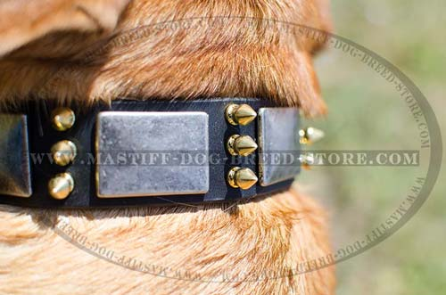 Soft Leather Collar with brass Spikes and Nickel Plates