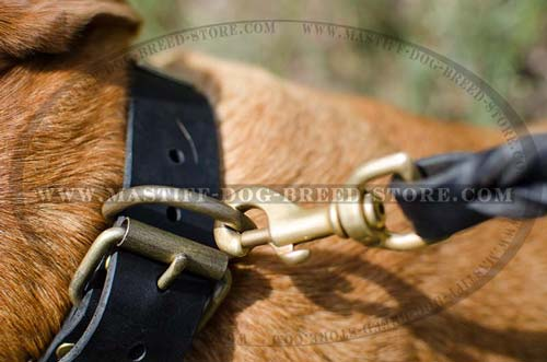 Fashion Leather Collar for Mastiffs