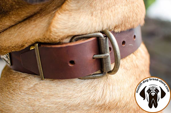 High-quality leather Mastino Napoletano collar