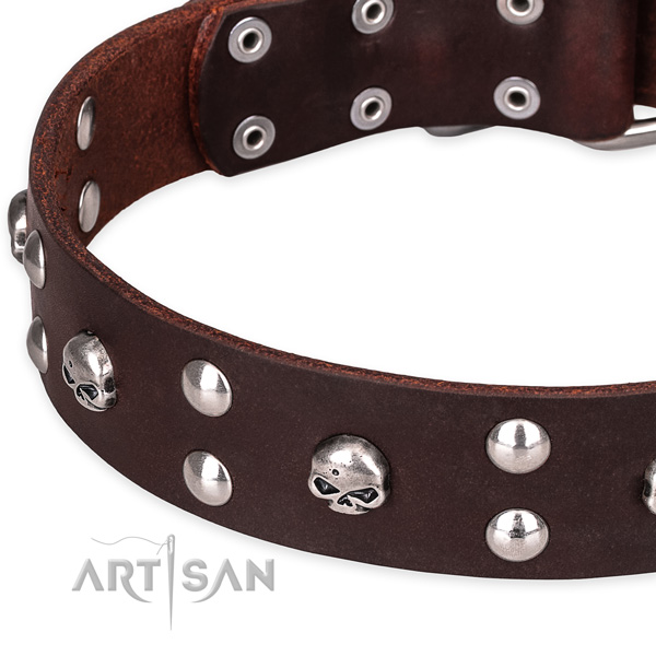 Casual leather dog collar with extraordinary decorations