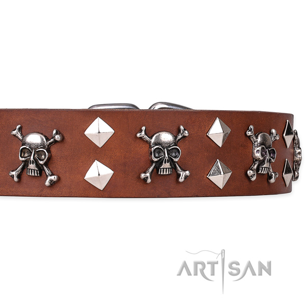 Daily leather dog collar with sensational decorations