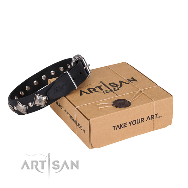 Everyday leather dog collar with astounding embellishments