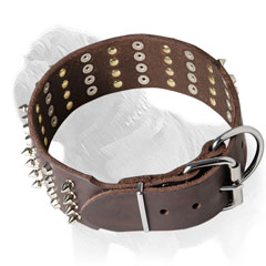 Leather Mastiff collar with handset spikes and studs