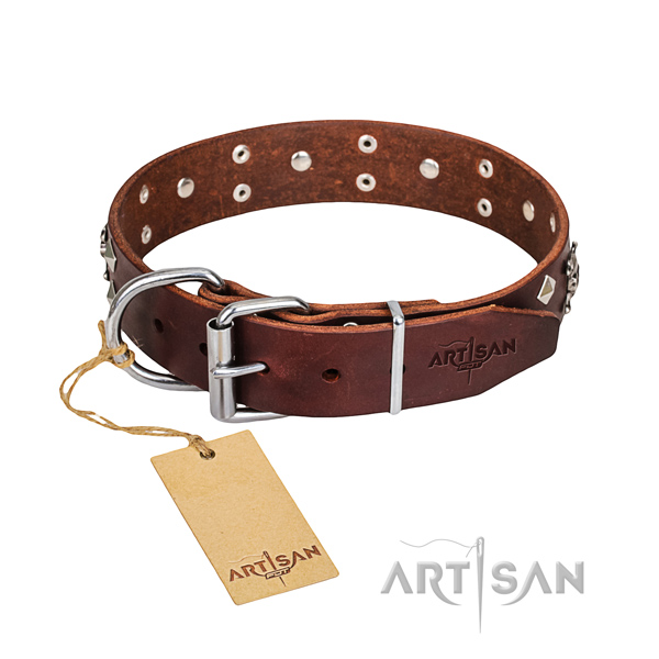 Sturdy leather dog collar with brass plated fittings