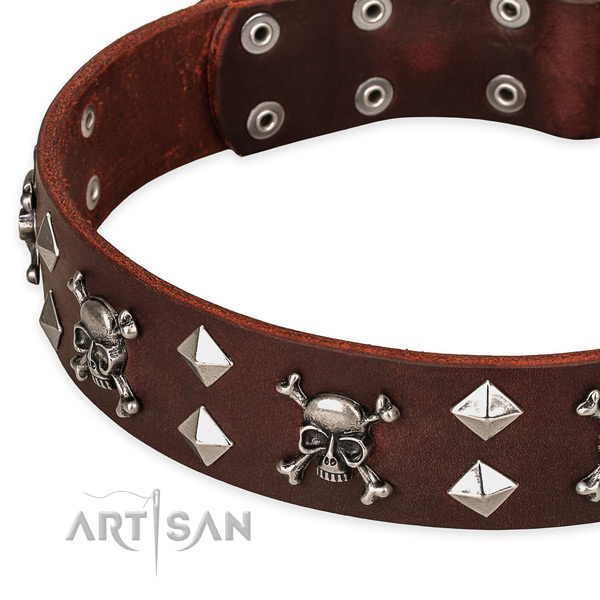 High quality leather dog collar for reliable usage