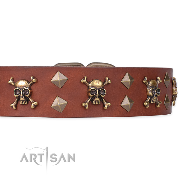 Best quality leather dog collar for reliable use