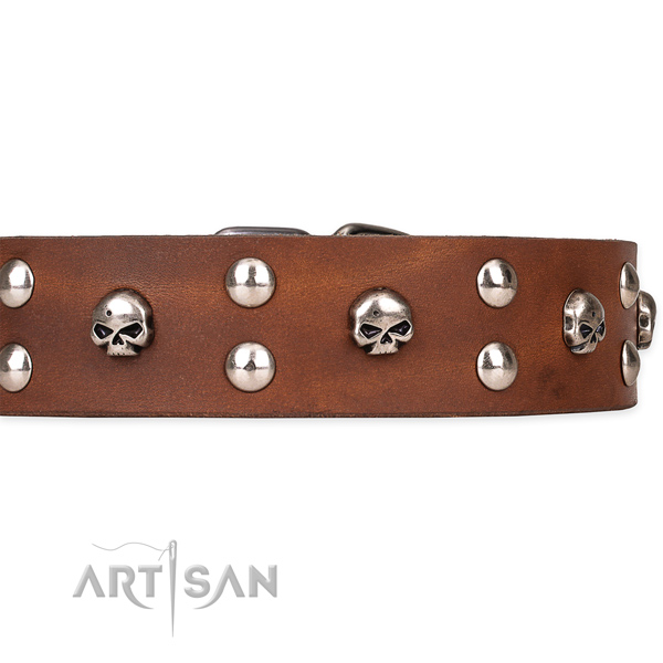 Natural leather dog collar with smoothly polished finish