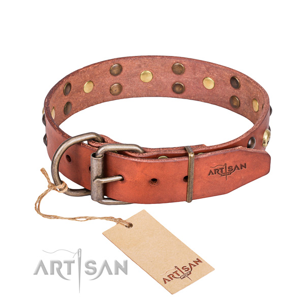 Leather dog collar with polished edges for comfy daily walking