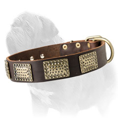 Fashion Leather Mastiff Collar with Brass Vintage Plates