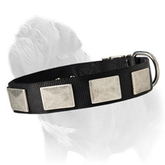 Easy washable dog collar for handling your Mastiff