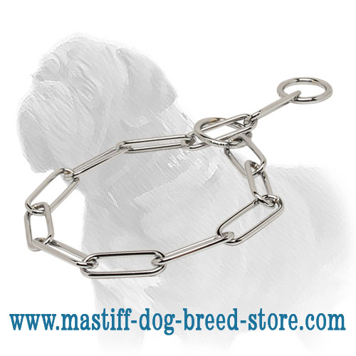 Choke collar for Mastiffs, fast training influence