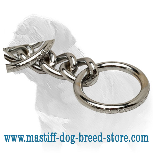 Choke collar for Mastiff, O-ring to clip the lead