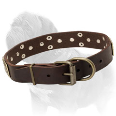 Mastiff dog collar with great adornment which never corrode
