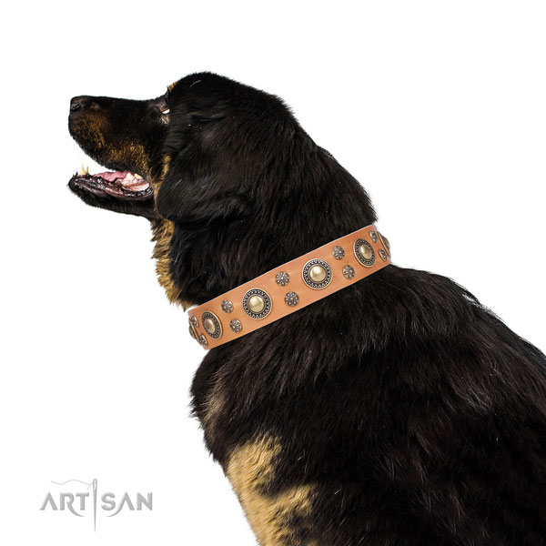 Mastiff easy wearing genuine leather dog collar for everyday walking