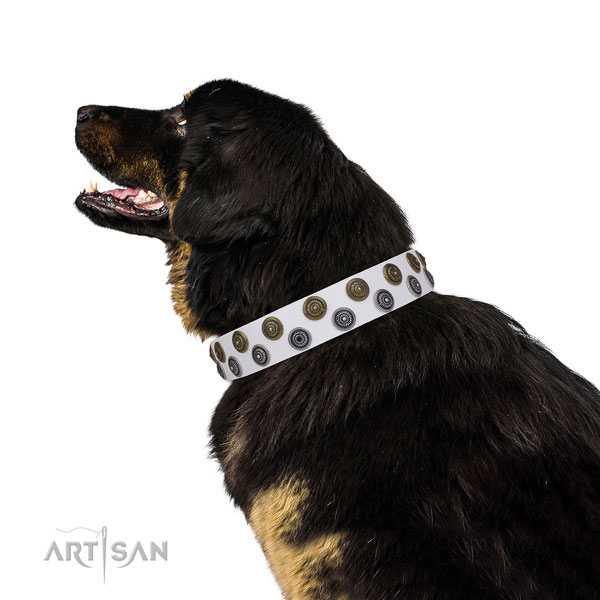 Mastiff inimitable full grain genuine leather dog collar for comfortable wearing