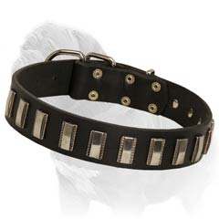 studded leather dog collars