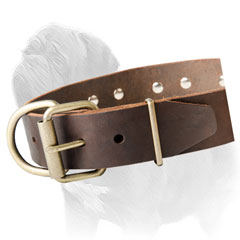 Excellent Quality Leather Dog Collar for Mastiff Walking and Training
