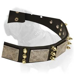Leather Canine Collar for Daily Mastiff Walking