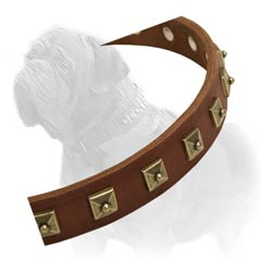Unique hand crafted collar for maximum comfort and style of your Mastiff