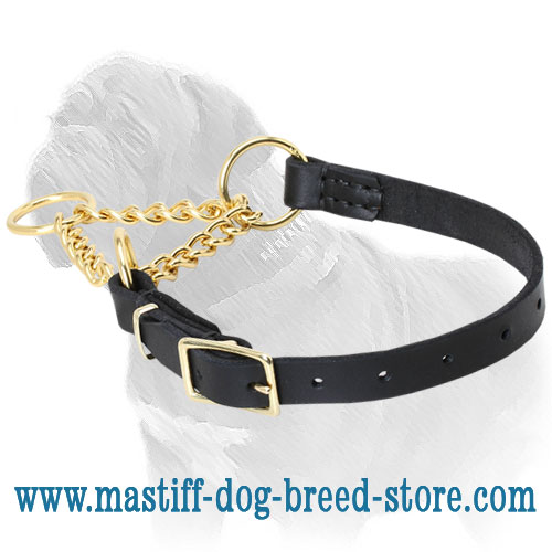 Martingale collar for dog control