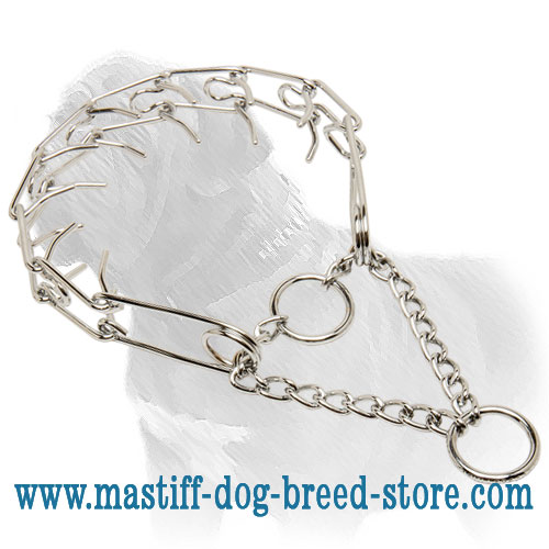 Mastiff dog pinch collar, easy adjustable