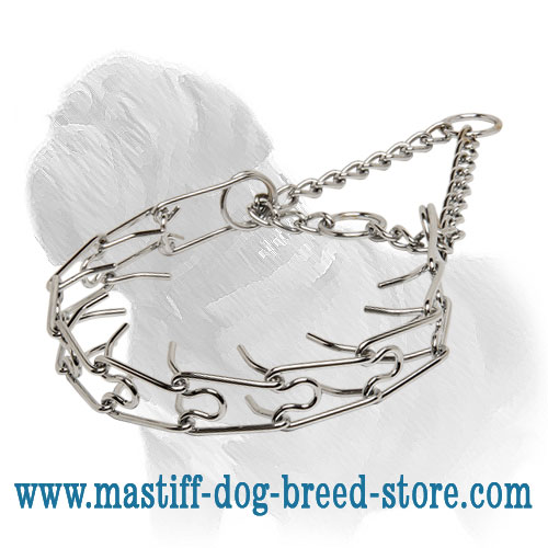 Dog Steel Prong Collar for Mastiffs, trendy design