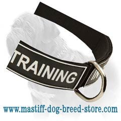 Excellent nylon collar at a low price title=
