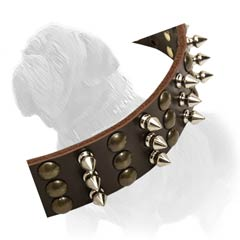 Mastiff leather collar that combines beauty, strength and comfort