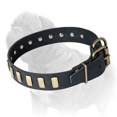 Mastiff Leather Collar for Walking in Style